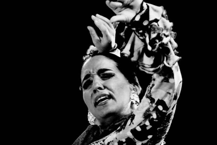 cardamomo tablao madrid flamenco saray garcia bailaora